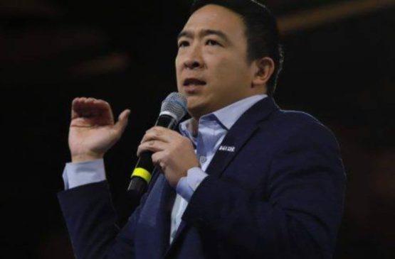 Andrew Yang net worth